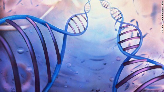 Νέα στοιχεία για το γενετικό υπόβαθρο των καρκίνων εγκεφάλου και ωοθηκών | tovima.gr