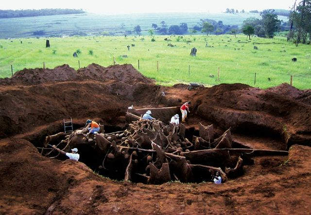 Οι πρώτοι γεωργοί του πλανήτη | tovima.gr