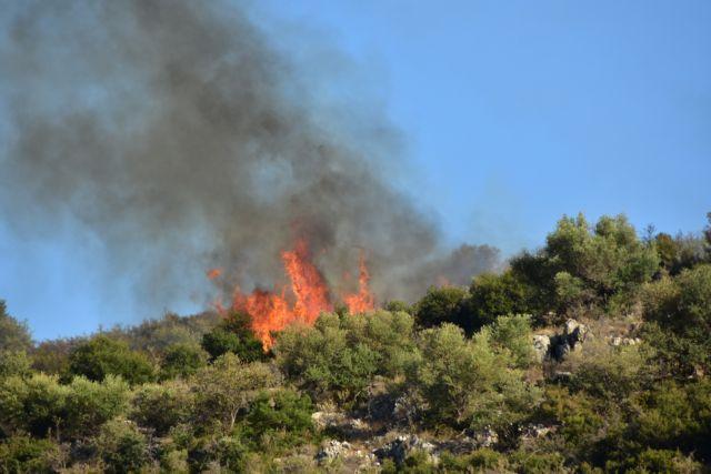 Υπό μερικό έλεγχο η φωτιά στον Γέρακα Αττικής | tovima.gr