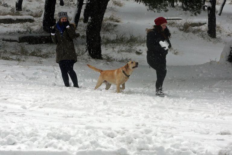 Ερχεται νέος χιονιάς το τριήμερο των Φώτων   tovima.gr