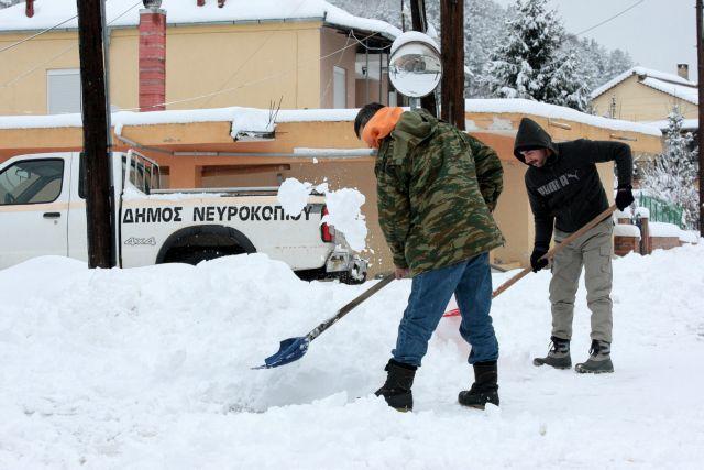 Αποστόλου: Εξετάζουμε την ενίσχυση κτηνοτρόφων που επλήγησαν από το χιονιά | tovima.gr