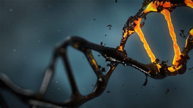 Επιστήμονες «μεγάλωσαν» το αλφάβητο του DNA   tovima.gr