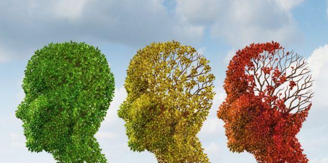 Νέα στοιχεία για τον εγκέφαλο, τη νόσο Αλτσχάιμερ και την άνοια | tovima.gr