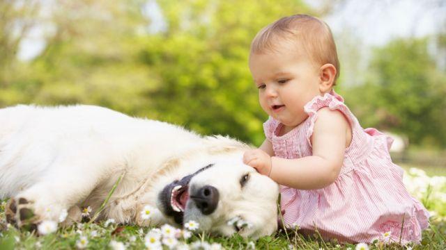 Ο σκύλος κάνει καλό στην υγεία! | tovima.gr