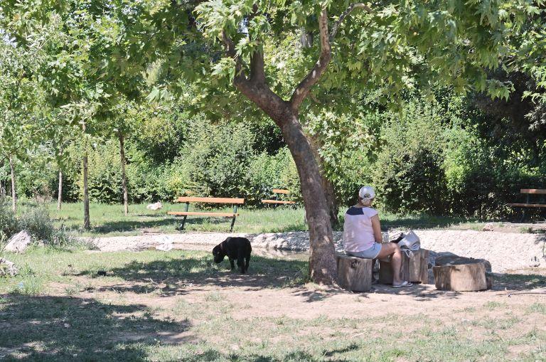 Στο Πεδίον του Αρεως το επόμενο δημοτικό συμβούλιο της Αθήνας | tovima.gr