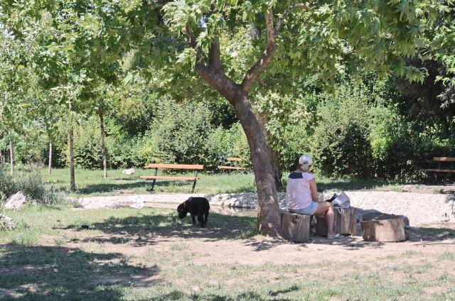 Πεδίον του Αρεως: Παιδικές χαρές χωρίς χαρά και χωρίς παιδιά   tovima.gr