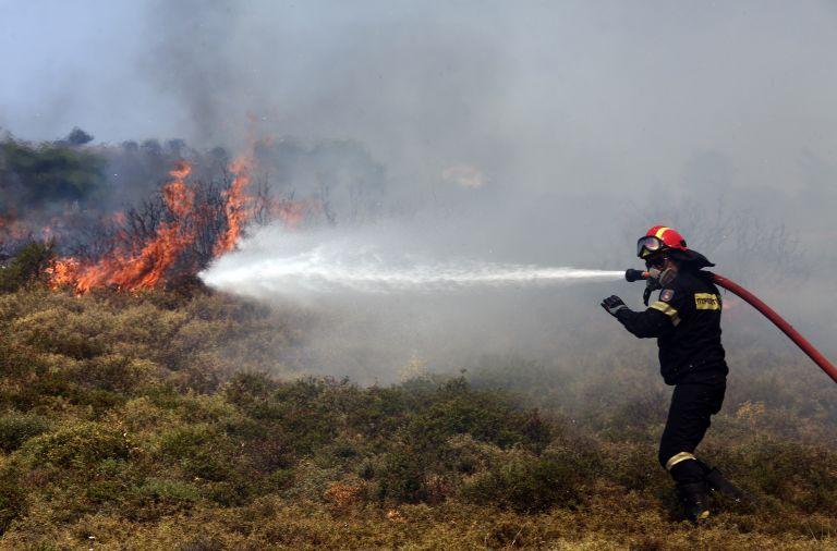Υπό μερικό έλεγχο η φωτιά στον Πρινιά Ηρακλείου | tovima.gr