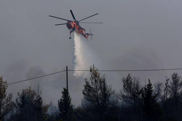 Πυρκαγιά στην Ηλεία – Απομακρύνεται ο κίνδυνος για Ροδινά-Κοστομέρα   tovima.gr