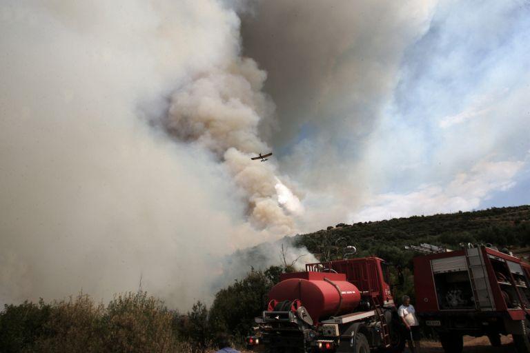 Ζάκυνθος: Συνεχίζεται η μάχη για τον έλεγχο της πυρκαγιάς στις Μαριές – Συνεχείς αναζωπυρώσεις   tovima.gr