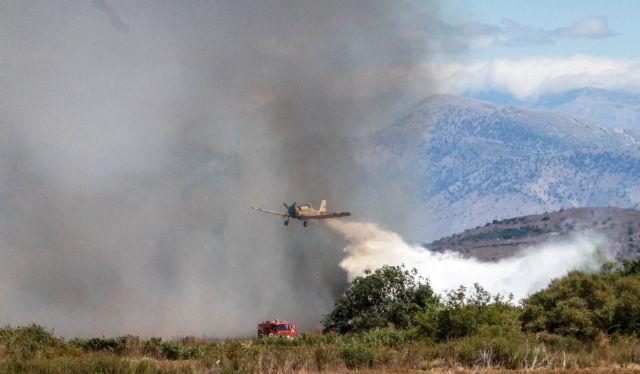 Φωτιά σε αγροτοδασική περιοχή στο Κούτσι Νεμέας | tovima.gr
