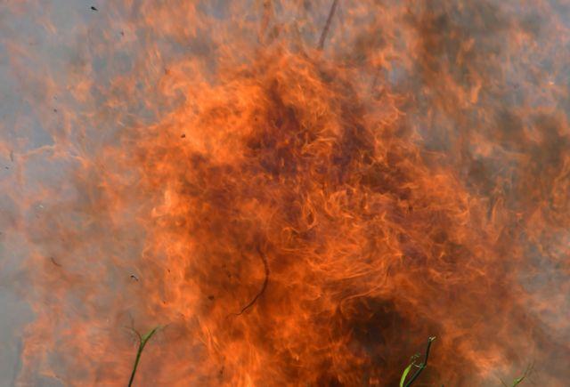 Πυρκαγιά στην Κύμη | tovima.gr
