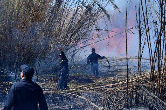Δασικές πυρκαγιές σαρώνουν το Πιεμόντε και τη Λομβαρδία | tovima.gr