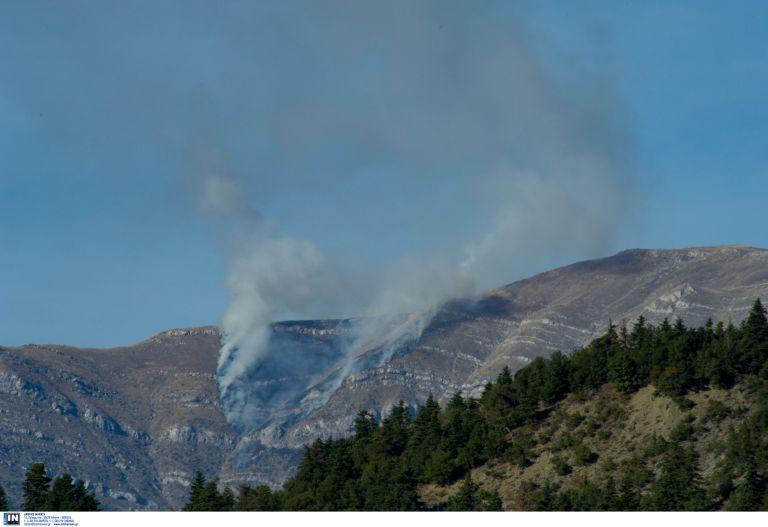 Πυροσβεστική: Περισσότερες φωτιές, λιγότερα καμμένα   tovima.gr