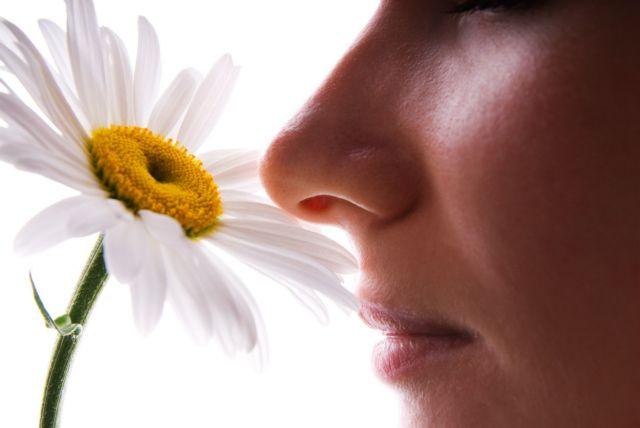 Η μύτη μας έχει βιολογικό ρολόι | tovima.gr