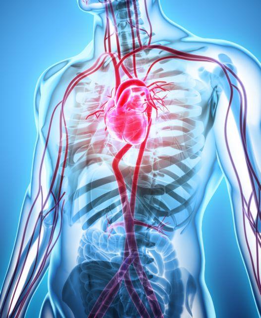 Χαζίμ Σάφι: Γεννημένος καρδιοχειρουργός   tovima.gr