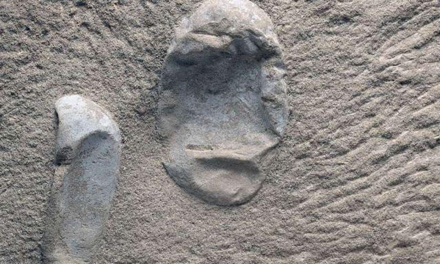 Κίνα: Ανακαλύφθηκαν 215 απολιθωμένα αυγά πτερόσαυρων   tovima.gr