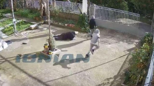 Σπάρτη: Ανήλικοι επιτέθηκαν και έκλεψαν 82χρονη | tovima.gr