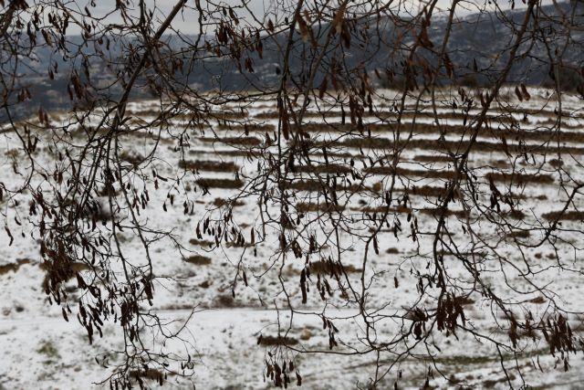 Λίβανος: 15 σύροι πρόσφυγες και παιδιά νεκροί από το κρύο   tovima.gr