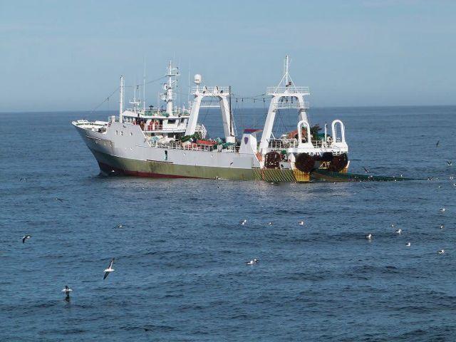 Εκτεθειμένοι στην επαγγελματική αλιεία πάνω από το ήμισυ των ωκεανών | tovima.gr
