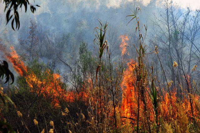Μεγάλη φωτιά στο Κάστρο της Πύλου | tovima.gr