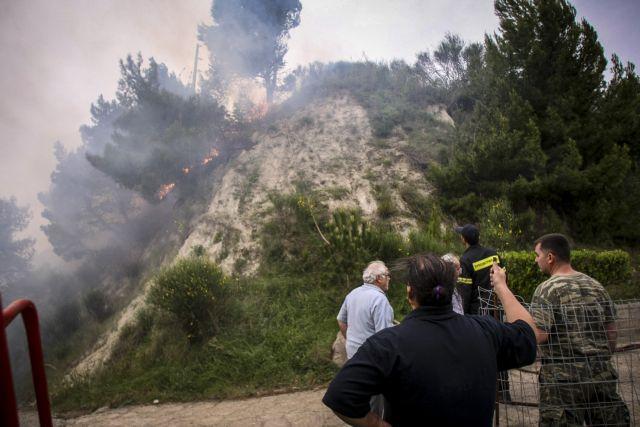Ηλεία: Σοβαρές οι ζημιές σε ελαιόδεντρα από τις πυρκαγιές | tovima.gr