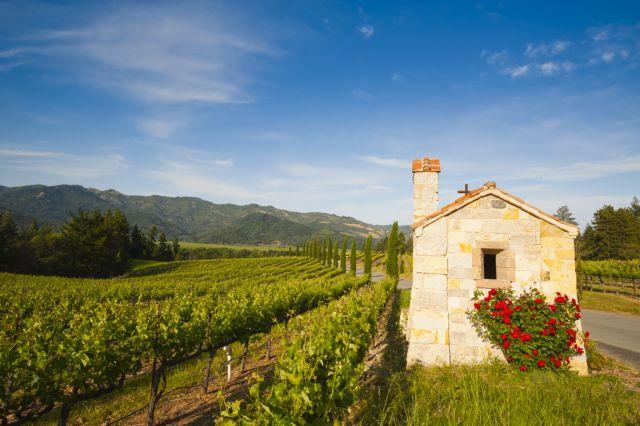 Στη χώρα των θαυμάτων | tovima.gr