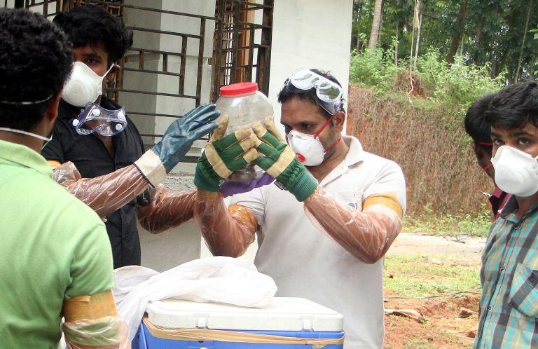 Ν. Ινδία: 10 νεκροί από ιό που μεταφέρουν νυχτερίδες – 100 σε καραντίνα | tovima.gr