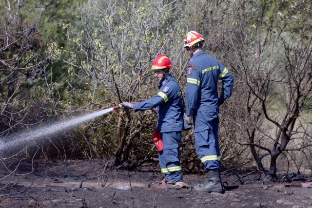 Φωτιά στην περιοχή Ριγανόκαμπος στην Πάτρα | tovima.gr