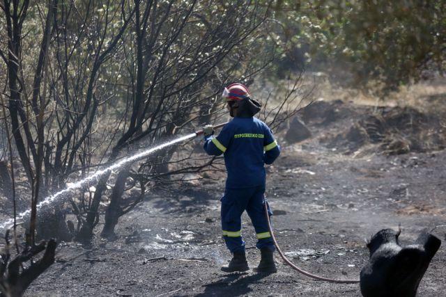 Υπό μερικό έλεγχο η φωτιά στο Ηράκλειο Κρήτης | tovima.gr