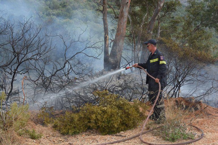 Πυρκαγιές σε δασικές εκτάσεις σε Βοιωτία και Αγρίνιο   tovima.gr