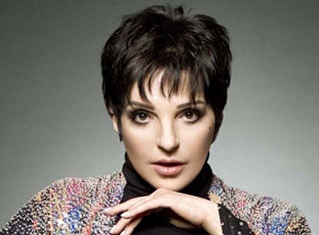Η Λάιζα Μινέλι πουλάει τους Γουόρχολ της   tovima.gr