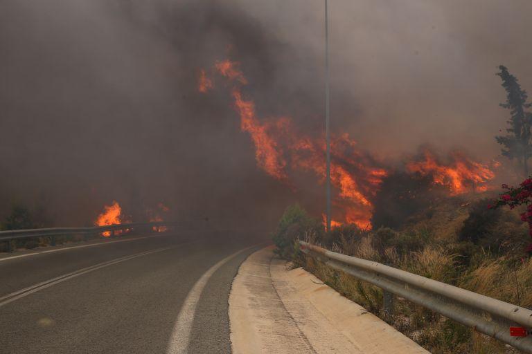 Κοινό μέτωπο για τις πυρκαγιές σχεδιάζει η ΕΕ | tovima.gr