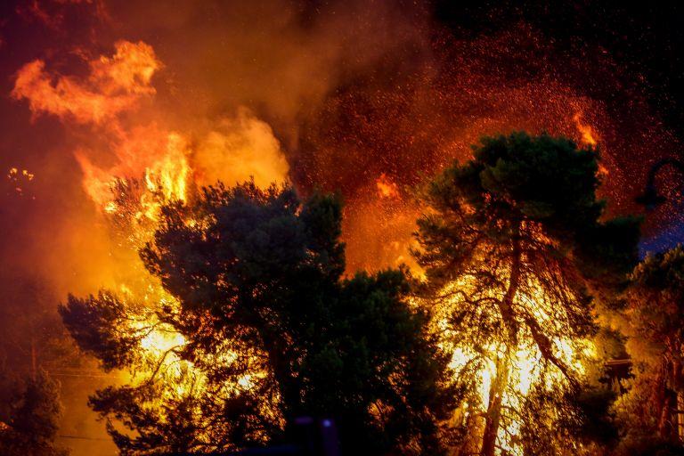 Αξιωματικός: Κανείς δεν πίστευε ότι η φωτιά θα πέρναγε τη Μαραθώνος | tovima.gr