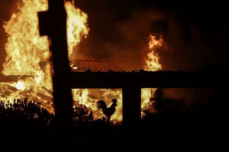 Νέα στοιχεία για την «Μαύρη Δευτέρα»: Δεν υπήρχε επικοινωνία Πυροσβεστικής – Αστυνομίας τις πρώτες ώρες της φονικής πυρκαγιάς | tovima.gr