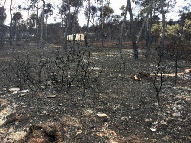 ΚΕΕΛΠΝΟ: Ελεγχοι από το ΚΕΔΥ στις πυρόπληκτες περιοχές | tovima.gr