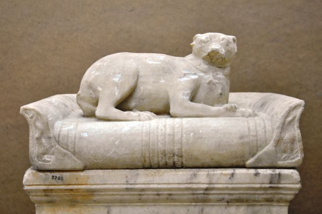 Αρχαιολογικό Μουσείο: Σπάνια σαρκοφάγος με την ολόγλυφη μορφή σκύλου | tovima.gr