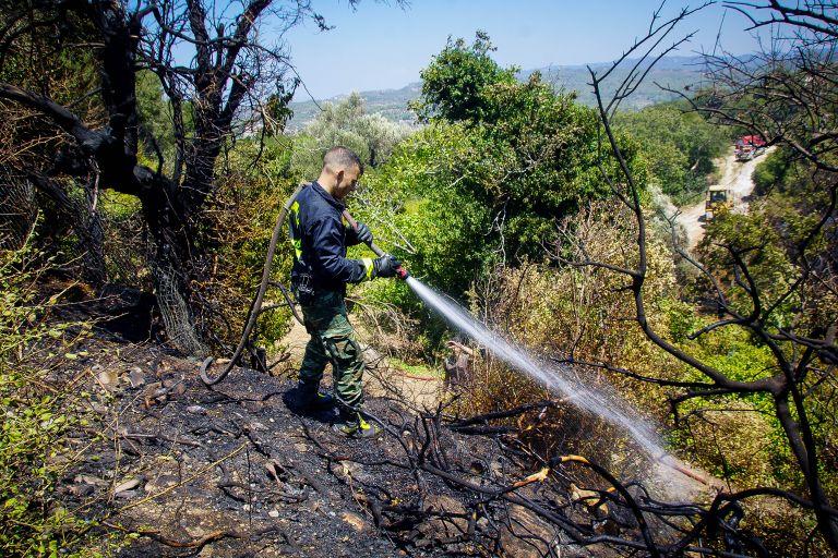 Φωτιά στην Άρλα Αχαΐας, απειλήθηκε το χωριό | tovima.gr