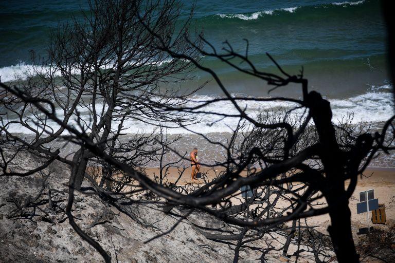 Μάτι: Η αλλοίωση του φυσικού τοπίου και η αλλαγή χρήσης γης, αιτία της φονικής πυρκαγιάς   tovima.gr