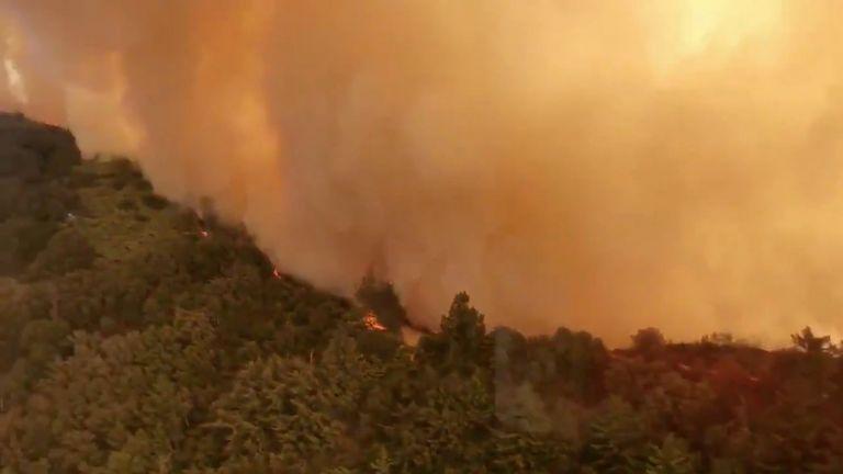 Καλιφόρνια : Όλο τον Αύγουστο θα καίει η πυρκαγιά | tovima.gr