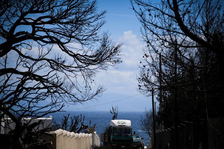 Τα 5 ερωτήματα του εισαγγελέα για την φονική πυρκαγιά στο Μάτι | tovima.gr