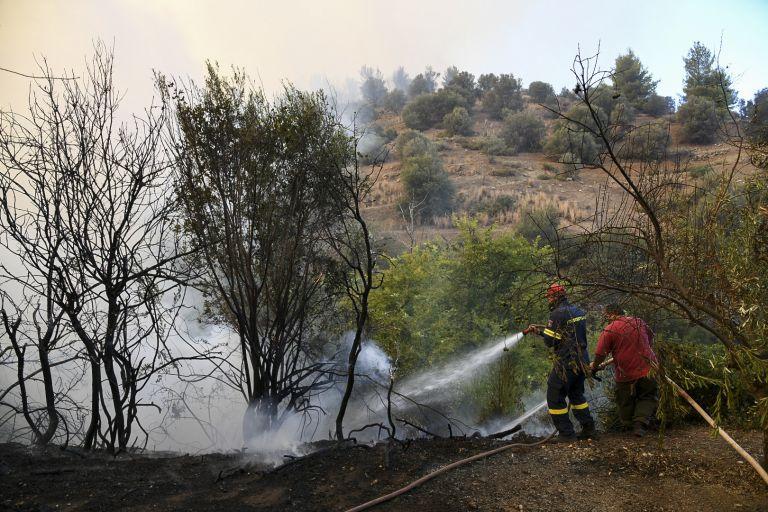 Εύβοια – Πυρκαγιά:  Δεν υπάρχουν ενεργά μέτωπα στην ευρύτερη περιοχή των Ψαχνών | tovima.gr