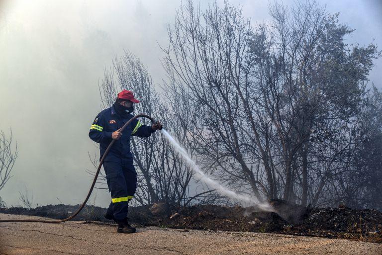 Κ.Μπακογιάννης : Τα πράγματα εξελίσσονται ικανοποιητικά στην Εύβοια | tovima.gr