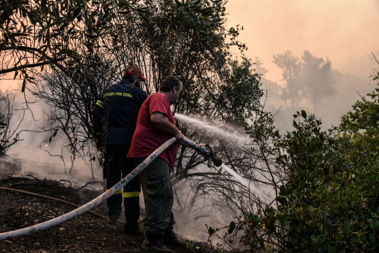 Σε εξέλιξη πυρκαγιά στην Αρκαδία | tovima.gr