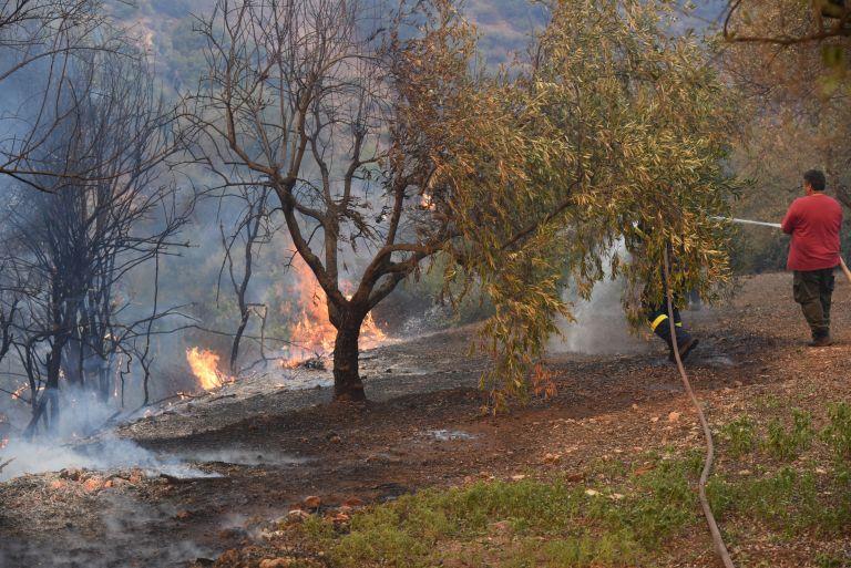 Υπό πλήρη έλεγχο η πυρκαγιά στα όρια των δήμων Ρεθύμνου – Χανίων | tovima.gr