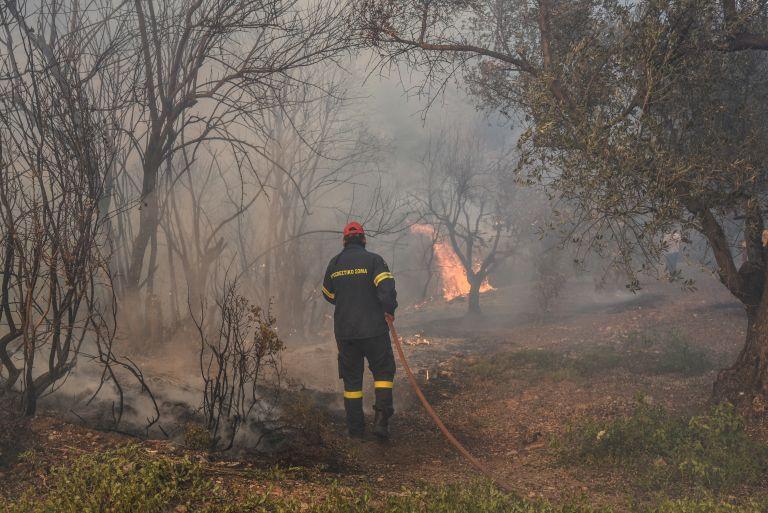 Εύβοια – φωτιά: Σε αντίθεση με την πυρκαγιά στο Μάτι υπήρξε συντονισμός | tovima.gr
