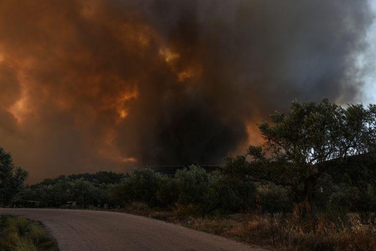 Σε εξέλιξη φωτιά στη Ζάκυνθο από το Σάββατο το βράδυ | tovima.gr