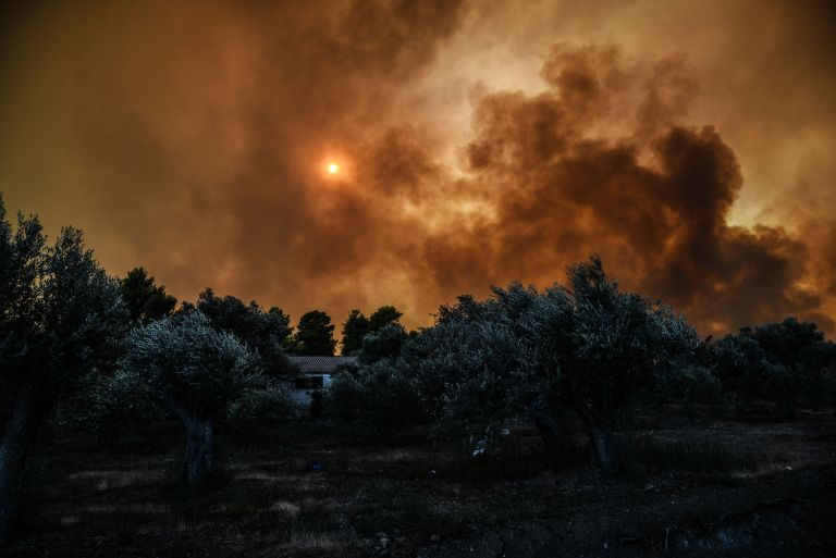 Φωτιά Εύβοια : Σταμάτησαν τα εναέρια μέσα – Τι δήλωσε ο διοικητής της Πυροσβεστικής στο νησί | tovima.gr