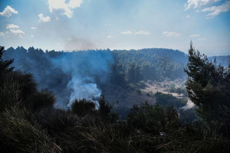 Αλεξανδρούπολη: Πυρκαγιά σε δασική έκταση στην περιοχή Καβυσός   tovima.gr