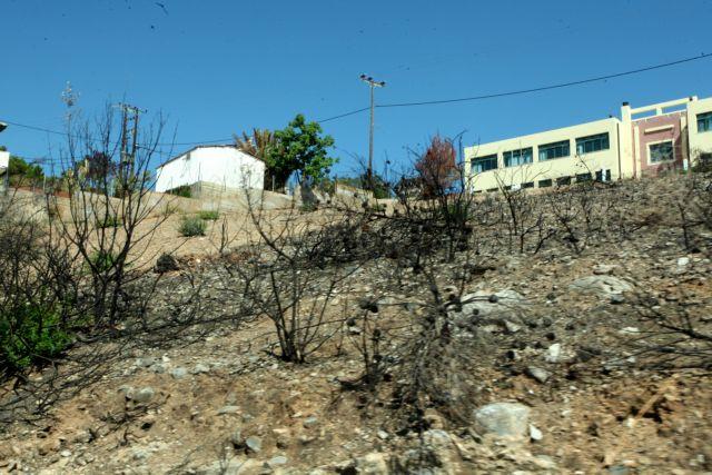 Ξοδεύουμε 500 εκατ. ετησίως στην αντιμετώπιση  πυρκαγιών αλλά… καιγόμαστε | tovima.gr
