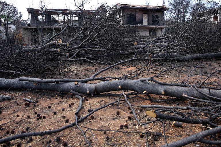 Τραγωδία στο Μάτι: Προθεσμία για τον Νοέμβριο πήραν οι κληθέντες από την Εισαγγελία | tovima.gr